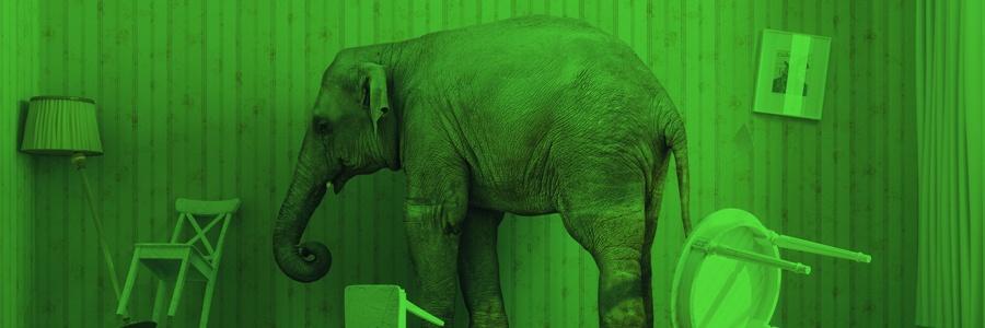 Elephant in Room_900x300