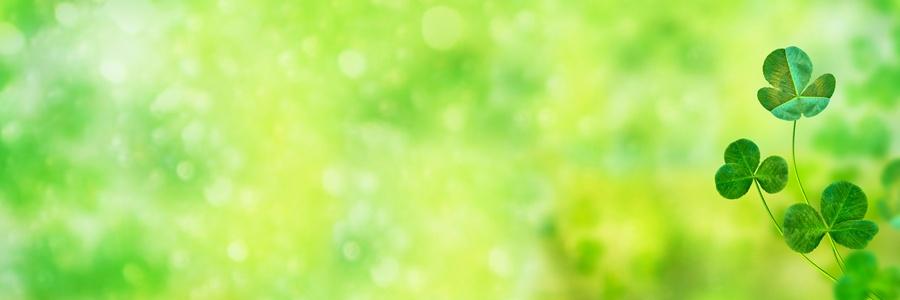 St Patricks Day clover 900x300